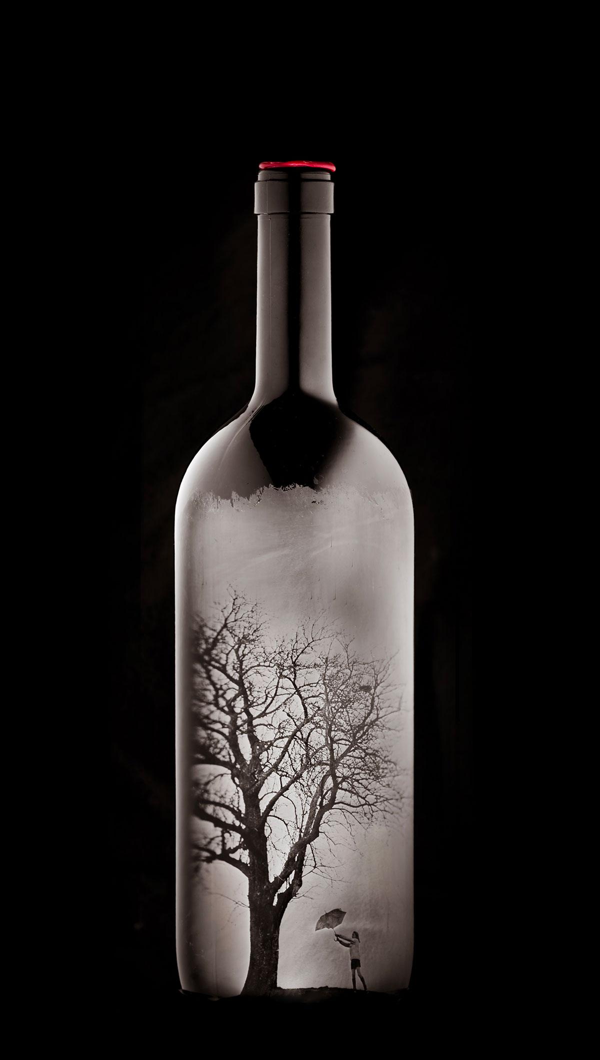Package-Design-Bottle_Wine_Stefan-Sappert_01