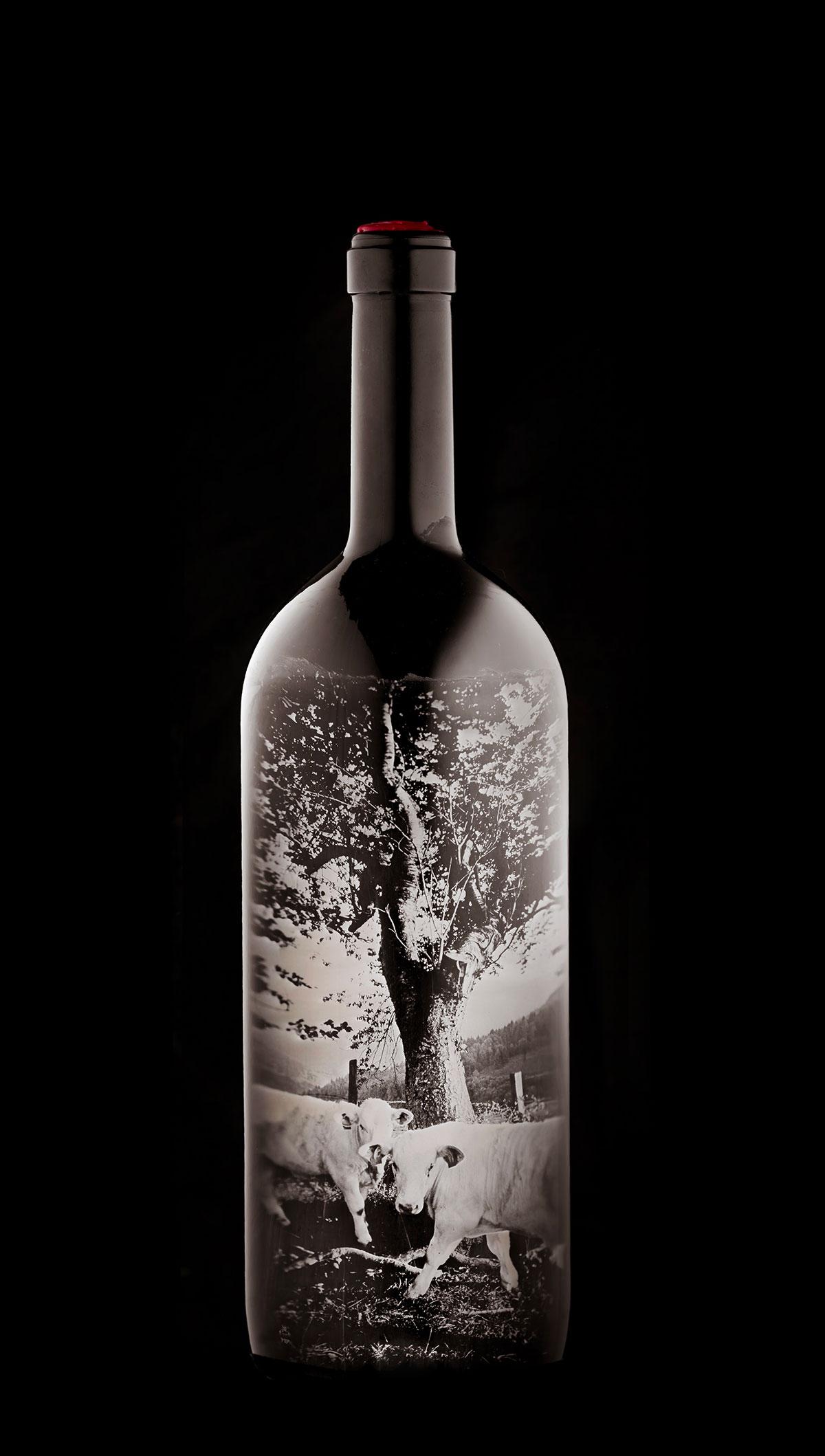 Package-Design-Bottle_Wine_Stefan-Sappert_05